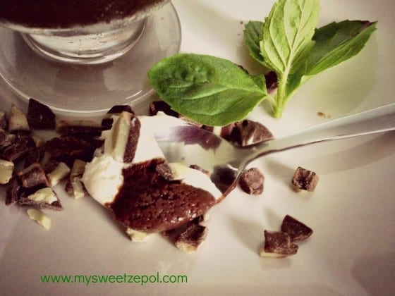 Mint-Espresso-Chocolate-Pudding-spoon-photo-mysweetzepol