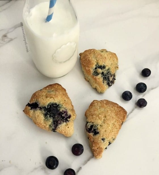 Mini Buttermilk Blueberry Scones / perfect way to start or end any day / enjoy with a tall glass of milk or a nice hot cup of coffee / super easy recipe by My Sweet Zepol