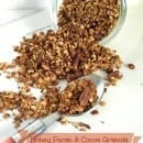Honey_Pecan&Cocoa_Granola_topsy_spoon_hero-image