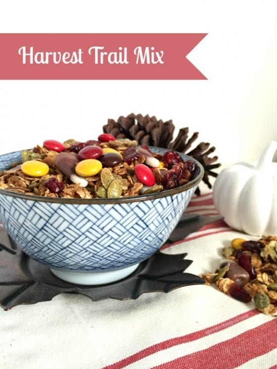 Harvest Trail Mix, perfect for those long fall afternoon outdoors activities. Enjoy healthy snacking all day long. / recipe by My Sweet Zepol #foodblog #fallrecipe