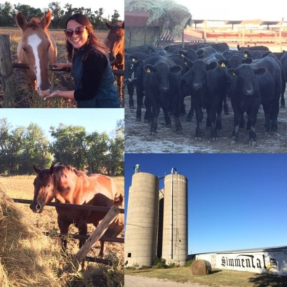 Sawyer Land and Cattle, Kansas / From farm to table, meet local farmers #FarmFoodTour / by My Sweet Zepol #foodblog