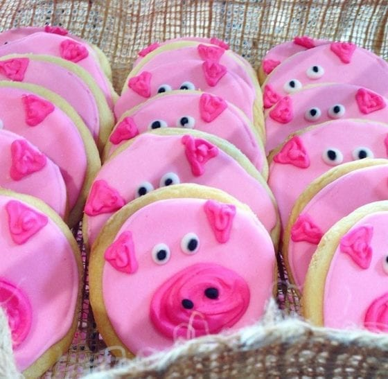 Just born pigglets are adorable / Your food comes from a farmer's hands including these adorable and delicicous cookies #PassThePork tour - Minnesota / #realpigfarming / My Sweet Zepol #foodblog