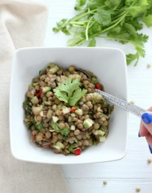 Healthy Refreshing Lentil Salad