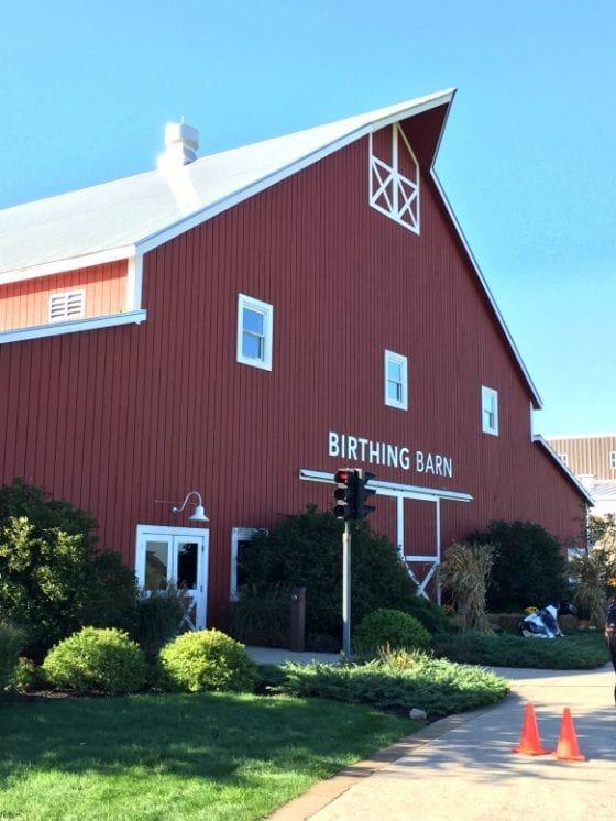 Birthing barn in Fair Oaks Farm #RealPigFarming in Indiana