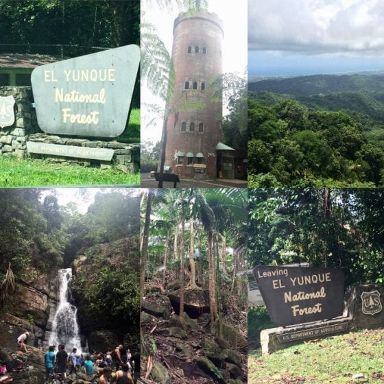 A collage from El Yunque National Forest in Puerto Rico, #PuertoRicoStrong #travel