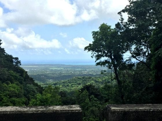 Once El Yunque National Forest in Puerto Rico comes back to life you must plan a trip and enjoy it's amazing views from the tower, #PuertoRicoStrong #travel
