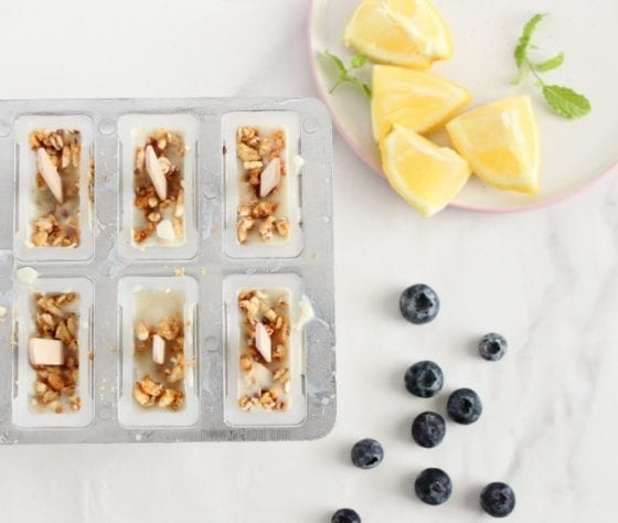 easy blueberry yogurt popsicles with granola, fresh bluerries, lemons and mint leaves