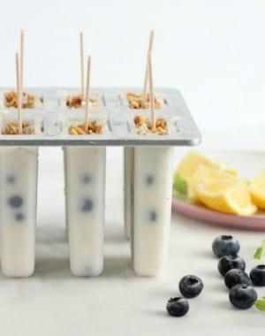 easy blueberry yogurt popsicles on a popsicle mold toped with granola with lemon wedges on the side and fresh blueberries from Wish Farms