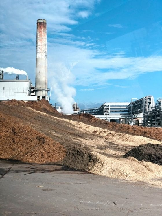 GP Foley Cellulose mill #GPinFL