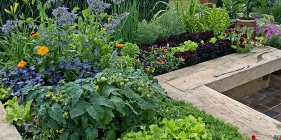 raised garden bed plans layouts