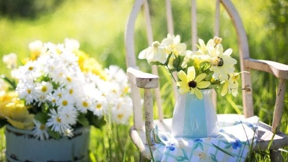 outdoor plants on containers, wooden chair with a blanket on it. colorful flowers outdoor container garden