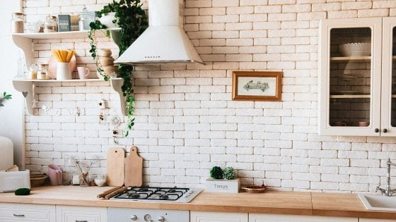 Country kitchen with shelves to store kitchen utensils, dishes and pots, green plant and kitchen decor.