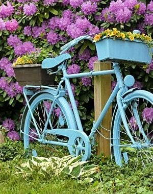 lush green grass with purple flowers growing in a garden, blue bike with yellow flowers in a basket