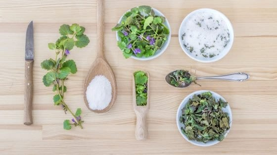 fresh herbs to cook with, lemon, Rosemary, lavender, mint