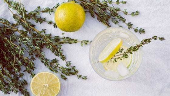 fresh herb, thyme, on a drink