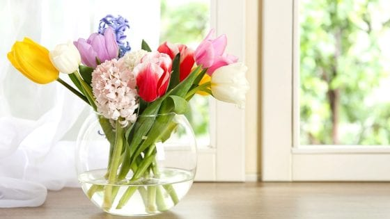 flower arrangement in a clear flower vase with water next to a window. colorful tulips
